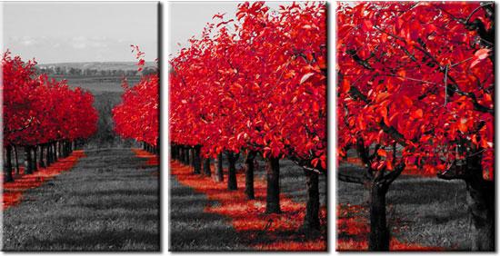 Tryptyk Czerwony Sad Czerwony Krajobraz Na ścianę Do Salonu