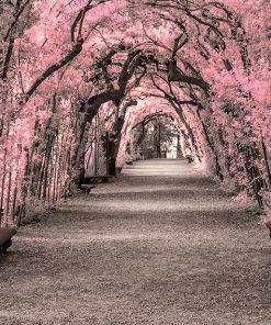 fototapeta powiększająca z różowymi drzewami