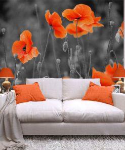 fototapeta pomarańczowe maki na łące