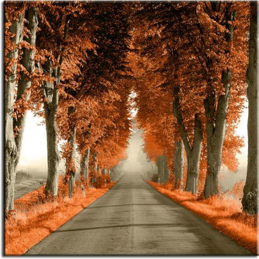 tapeta z pomarańczową aleją drzew