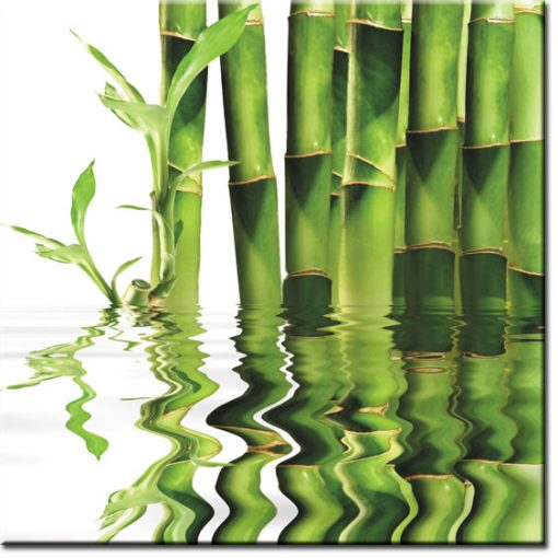 zielona fototapeta na ścianę