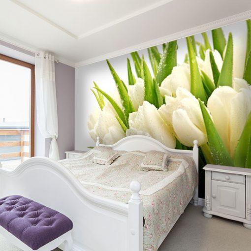 fototapeta z białymi tulipanami