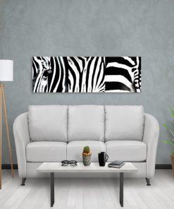 czarno-biały obraz z zebrą do salonu