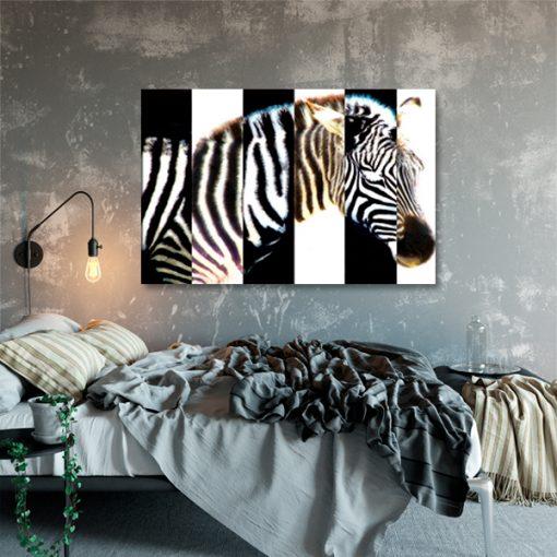 obraz na ścianę do sypialni z zebrą