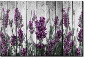 Tanie fototapety na wymiar – okazje
