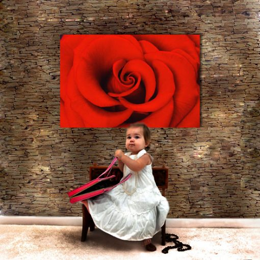 obrazy z różami
